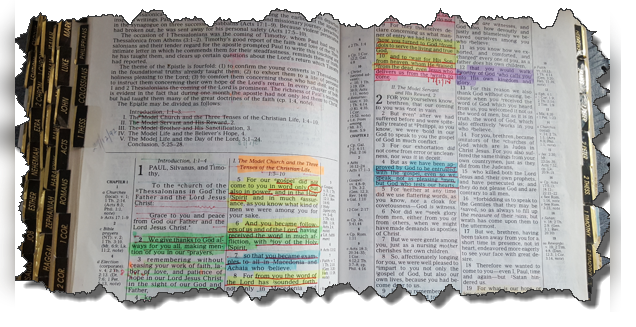 How to get the most out of your DAILY Bible Reading …