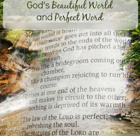 His Amazing Word and Works…